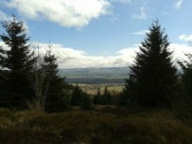 Walking at Aberfoyle